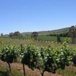 Clare Valley, SA