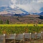 Marlborough, NZ