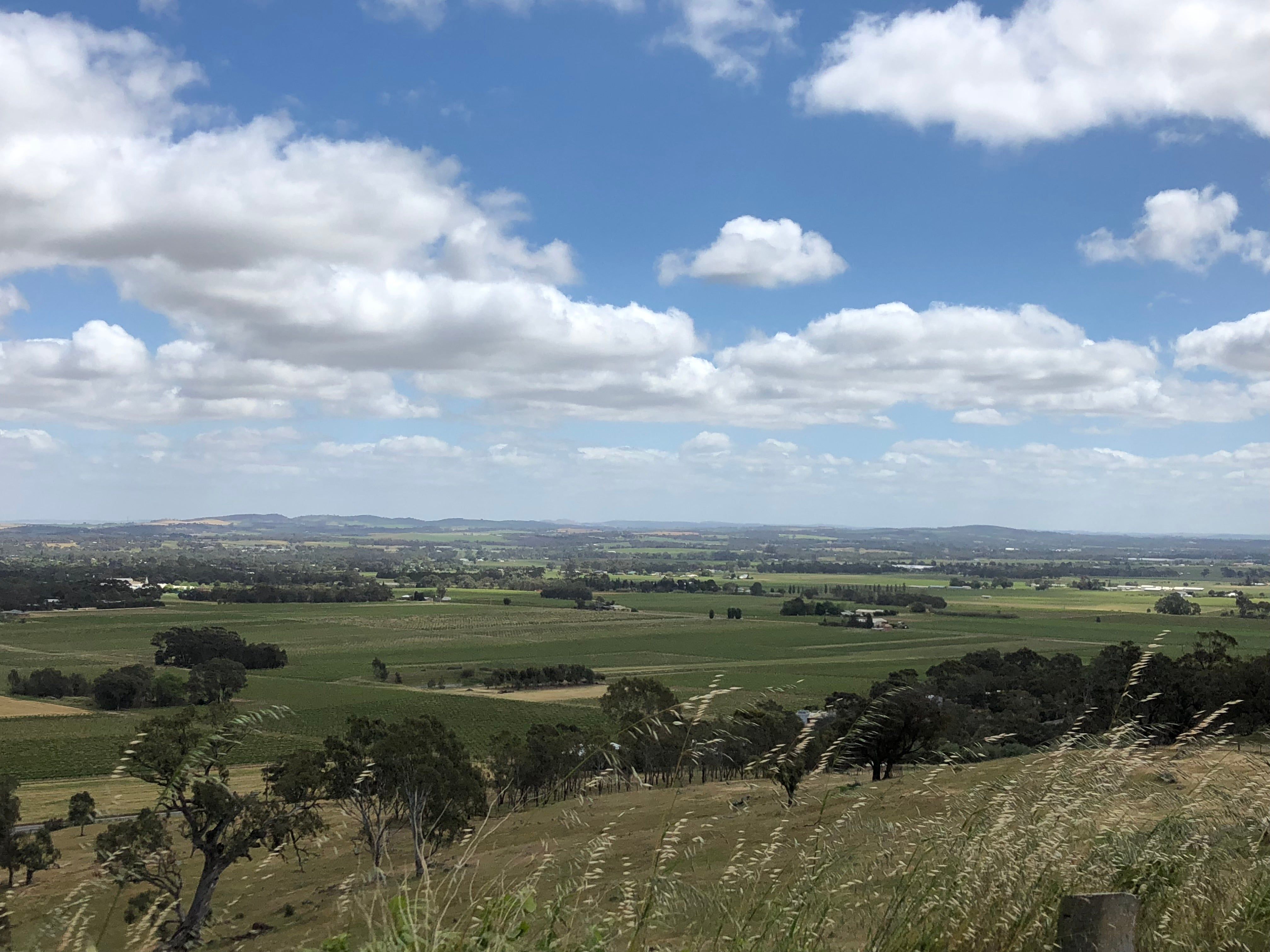 A Weekend in the Barossa Valley