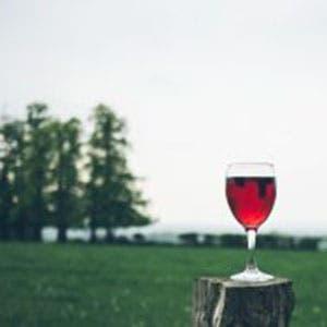 Tag us on Insta - win wine...